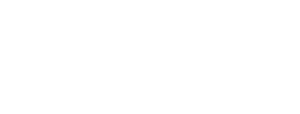 Maya Productions – Diverse Theatre That Creates Change